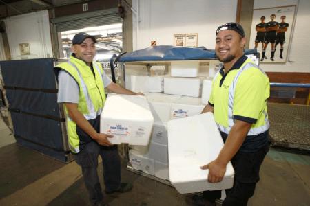 Cargo - Air New Zealand Careers